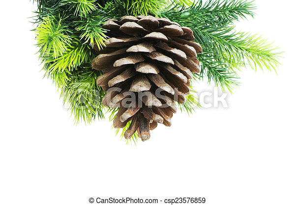 Christmas tree isolated on the white background - csp23576859