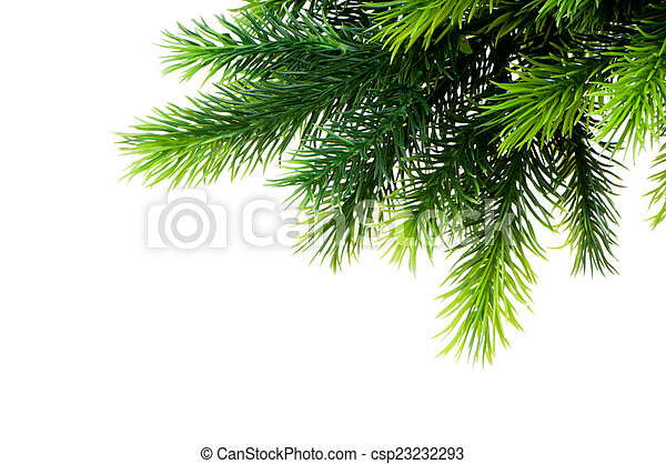 Christmas tree isolated on the white background - csp23232293
