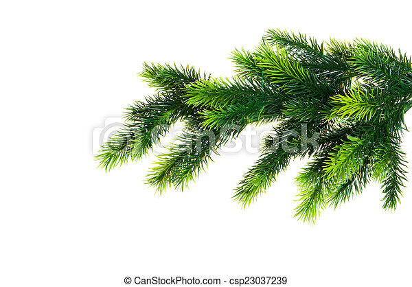Christmas tree isolated on the white background - csp23037239