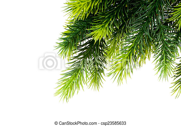 Christmas tree isolated on the white background - csp23585633