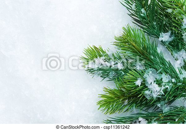 Christmas Tree over Snow. Winter Background - csp11361242