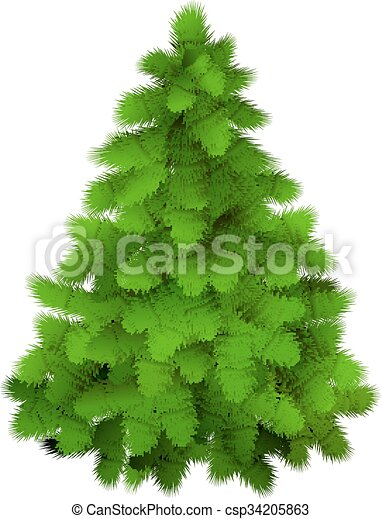 Christmas tree, realistic vector illustration. - csp34205863