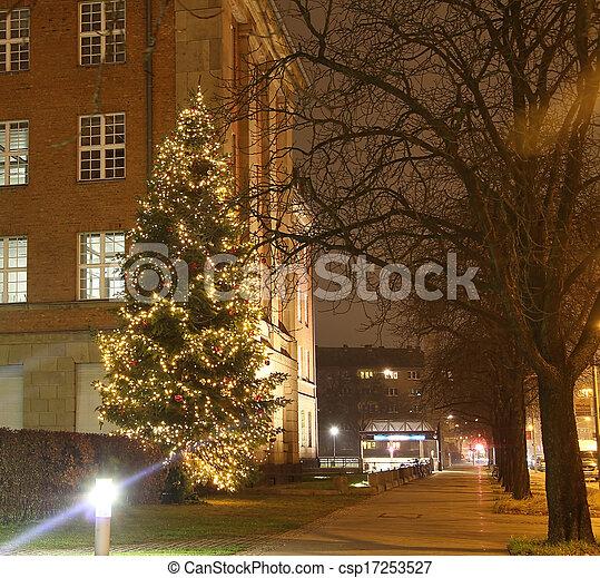 Christmas tree - csp17253527