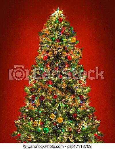 Christmas tree - csp17113709