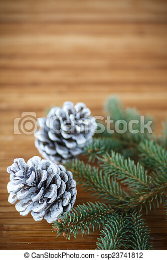 Christmas tree with cones - csp23741812