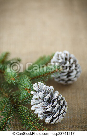 Christmas tree with cones - csp23741817
