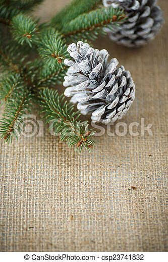 Christmas tree with cones - csp23741832