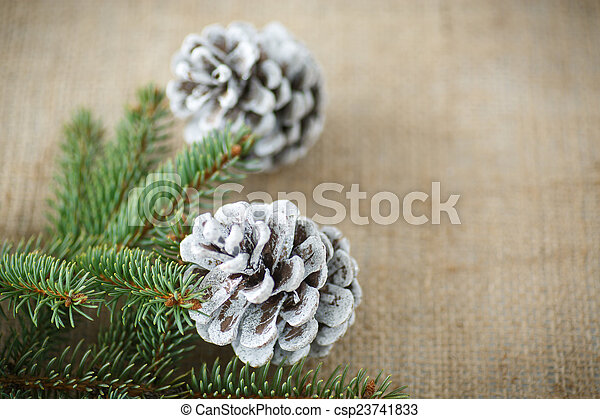 Christmas tree with cones - csp23741833