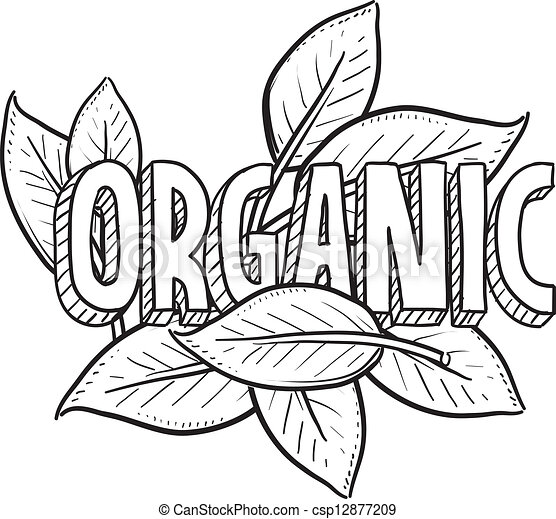 cibo, schizzo, organico - csp12877209