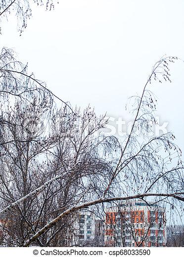 cidade, inverno - csp68033590