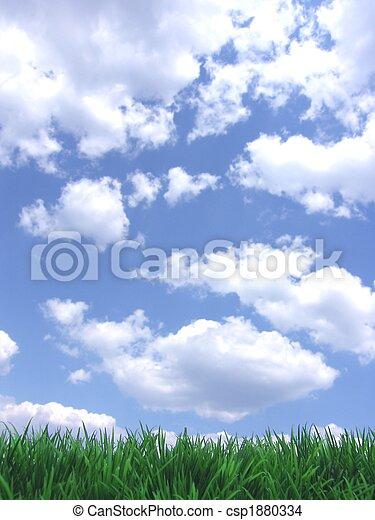 ciel bleu, herbe, vert - csp1880334
