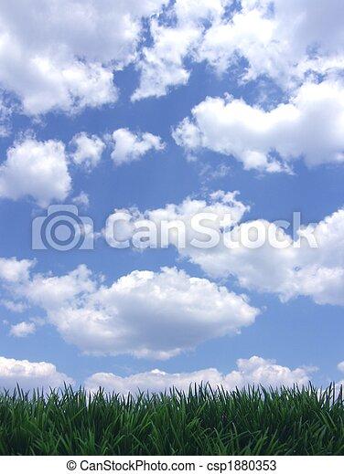 ciel bleu, herbe, vert - csp1880353
