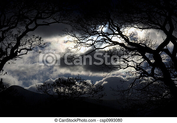 ciel, district lac, nuit - csp0993080