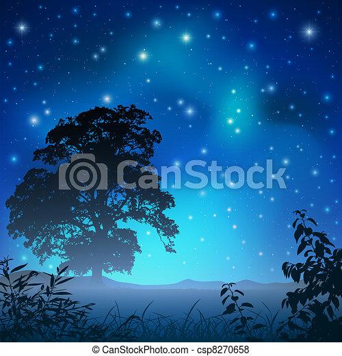 Cielo nocturno - csp8270658