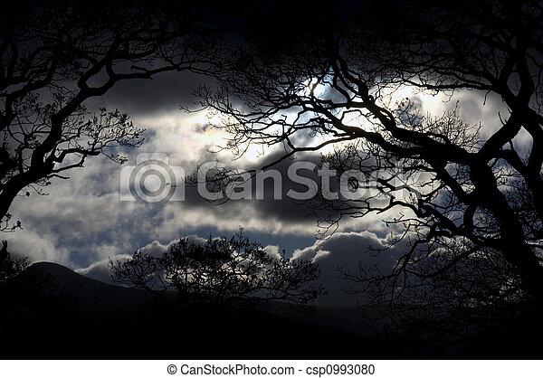 El cielo nocturno del distrito del lago - csp0993080
