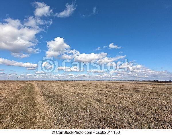 cielo, nubes, azul, paisaje., blanco, encima, farmland. - csp82611150