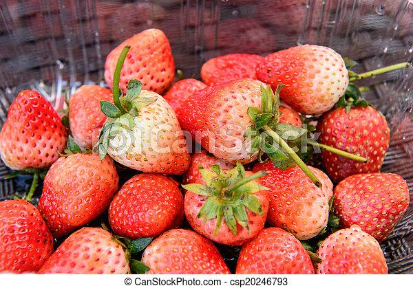 Cierra el paquete de fresas - csp20246793