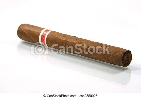 cigar reflection - csp0850026