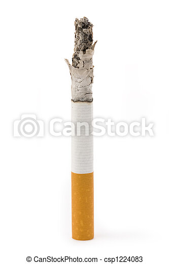 Cigarette Butt - csp1224083