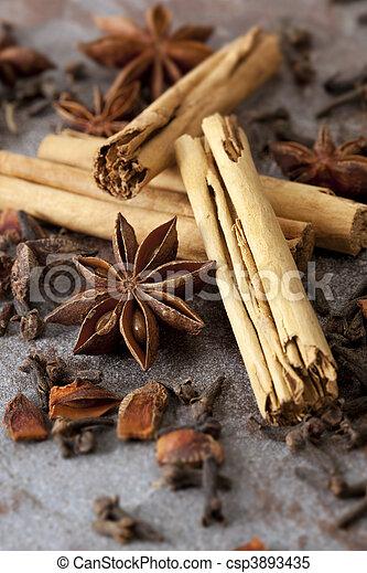 Cinnamon, Anise and Cloves - csp3893435
