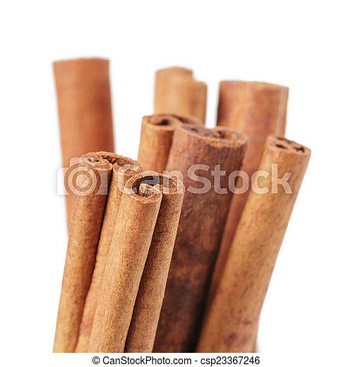 cinnamon cassia sticks - csp23367246