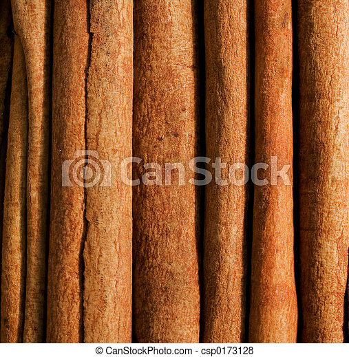Cinnamon stick - csp0173128