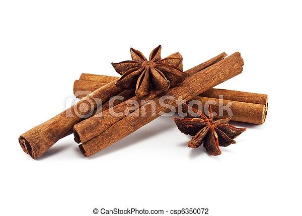 Cinnamon sticks and anise stars  - csp6350072
