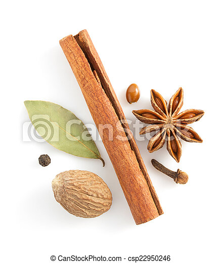 cinnamon sticks, anise star and spices on white  - csp22950246