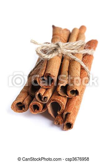 Cinnamon sticks - csp3676958