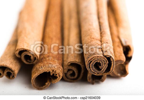 cinnamon sticks  - csp21604039