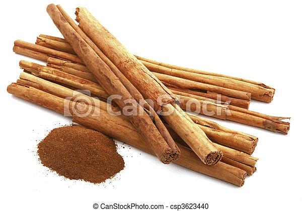 cinnamon - csp3623440