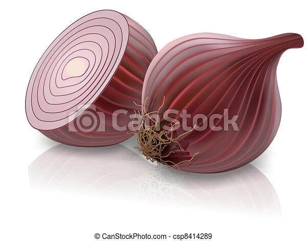 cipolla rossa - csp8414289