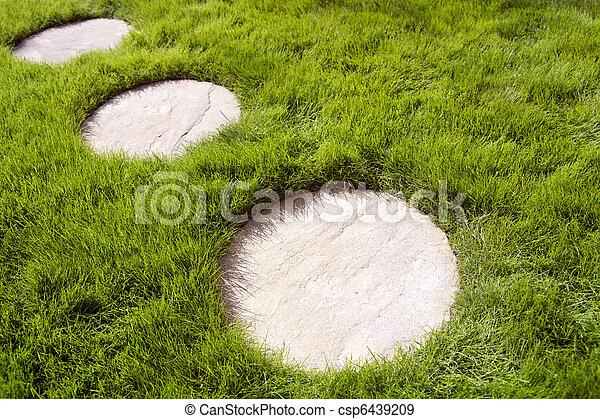 Circular Paving Stones And Grass Circular Paving Stones