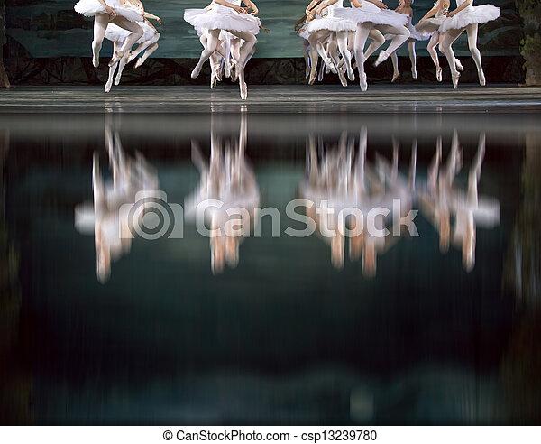 Bailarines del lago Swan - csp13239780