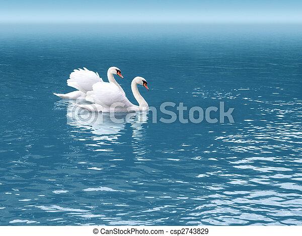 cisne, dois - csp2743829