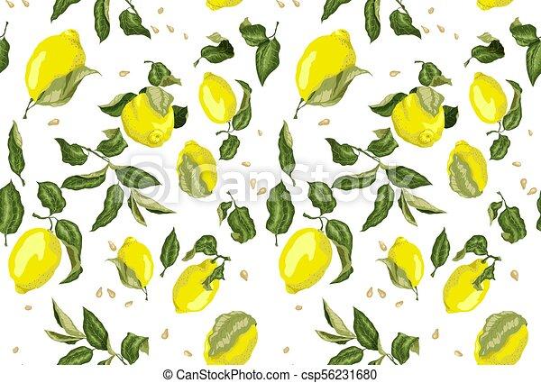 citroen, sappig, model, seamless, zonder, zaad, achtergrond, vruchten - csp56231680