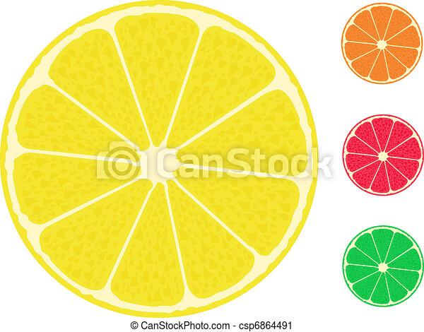 citrus fruit. Orange lemon lime grapefruit - csp6864491