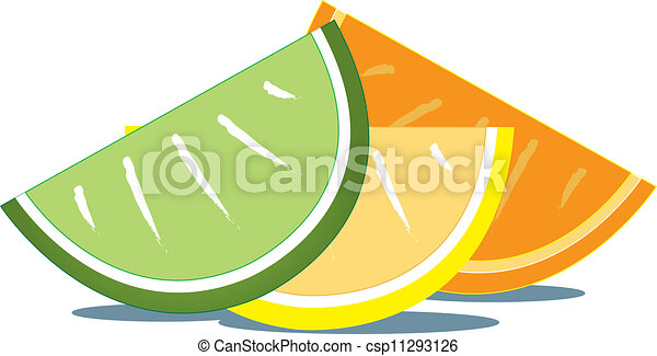 Lime Slice Drawing