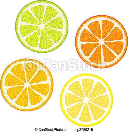 citrus fruits - csp3789215