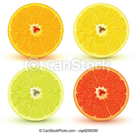 citrus fruits - csp6295090