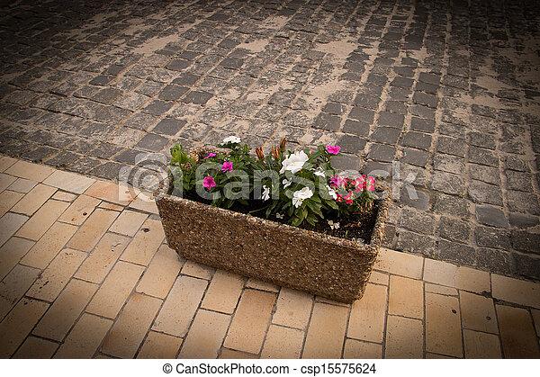 City flowers - csp15575624