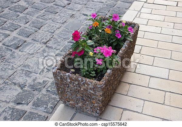 City flowers - csp15575642