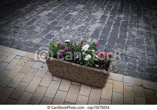 City flowers - csp15575634
