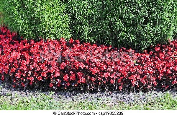 city flowers - csp19355239