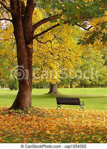 City park in autumn - csp1254355
