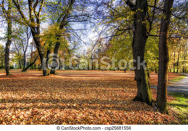 City Park in Autumn - csp25681556