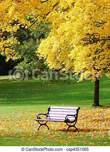 City park in autumn - csp4351065