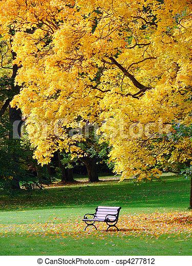 City park in autumn - csp4277812
