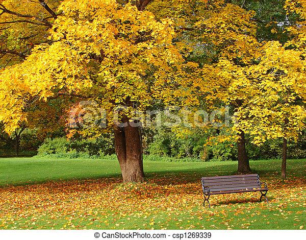 City park in autumn - csp1269339