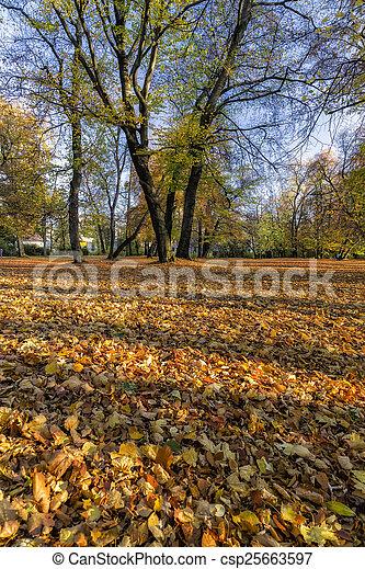 City Park in Autumn - csp25663597